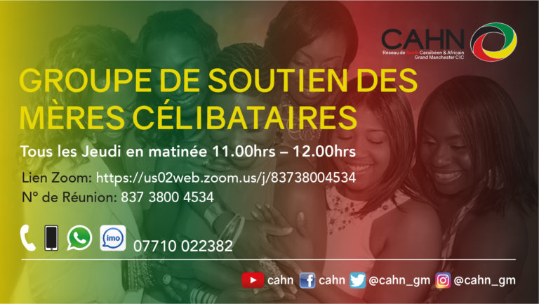 CAHN Single Mothers Peer Group French..